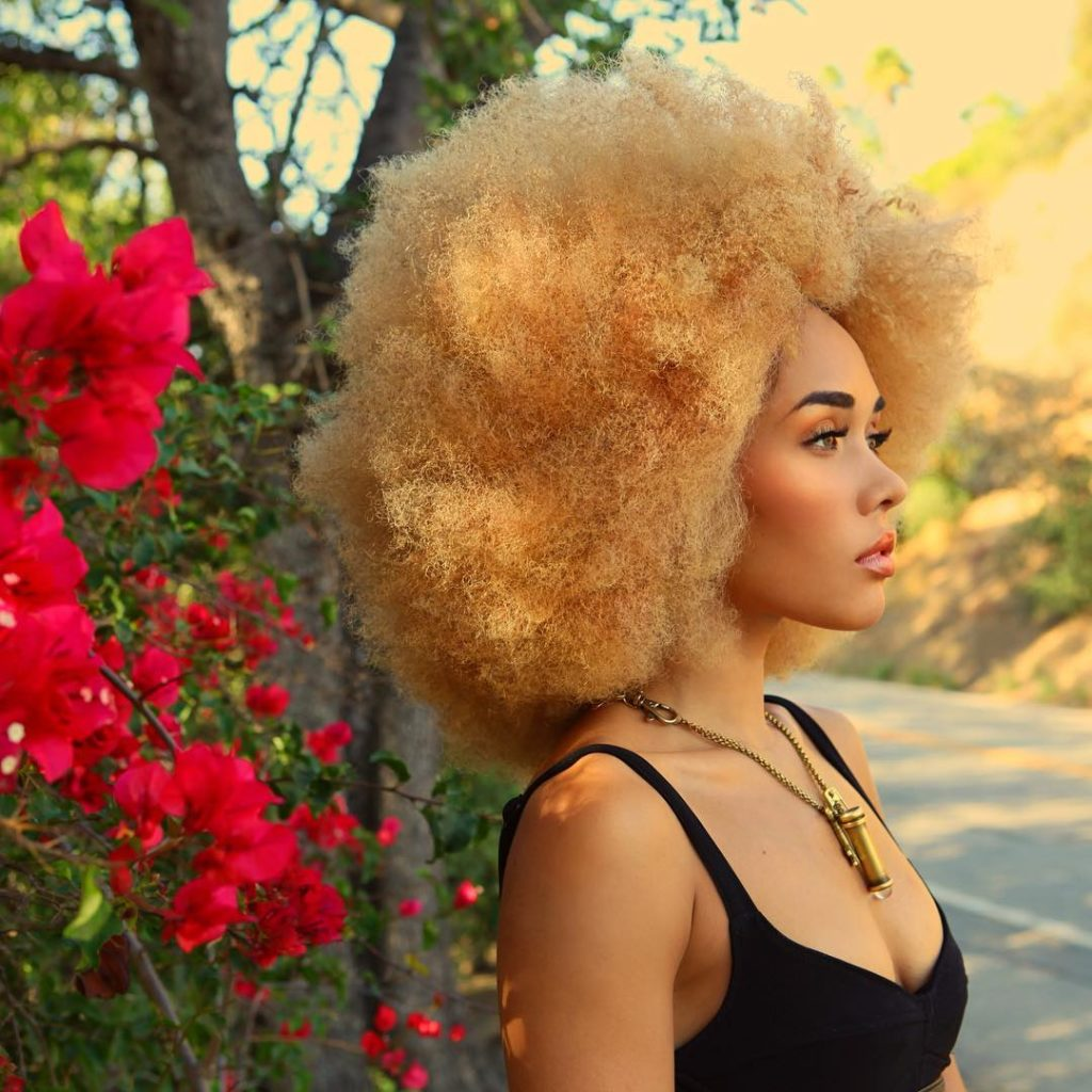 Blonde Afro Inspiration