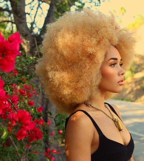 15 Awe-Inspiring Blonde Afro Hairstyles